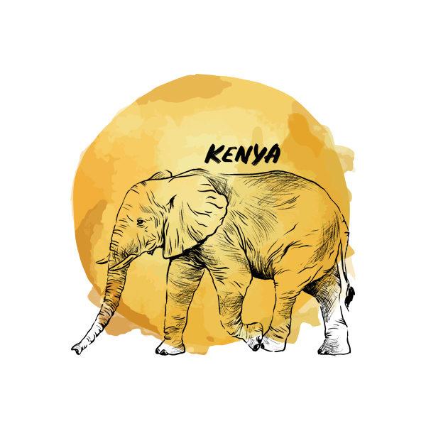 Logo Cafés de Especialidade Senzu Kenya Amarelo