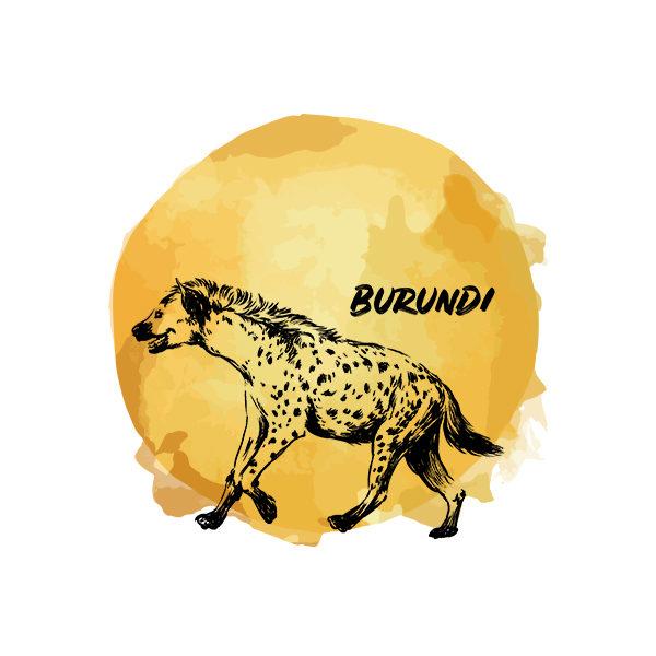 Logo Cafés de Especialidade Senzu Burundi Amarelo