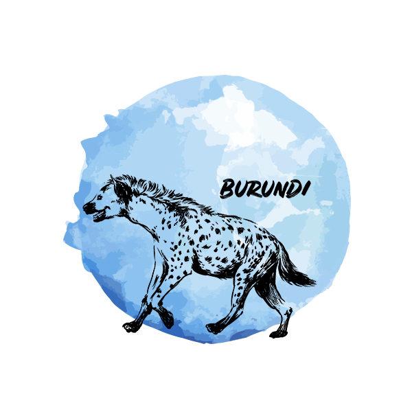 Logo Cafés de Especialidade Senzu Burundi Azul