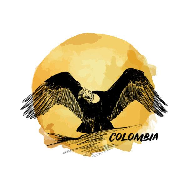 Logo Cafés de Especialidade Senzu Colombia Amarelo