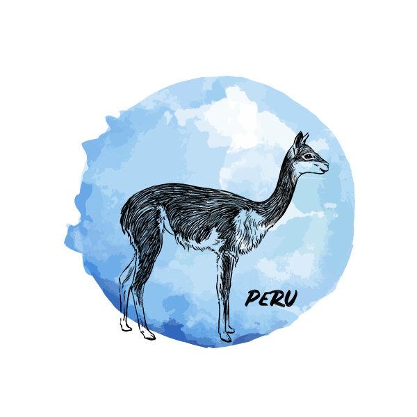 Logo Cafés de Especialidade Senzu Peru Azul